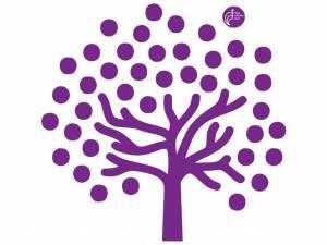 Aicina kopīgi veidot Rīgas Dzemdību nama Ģimenes koku